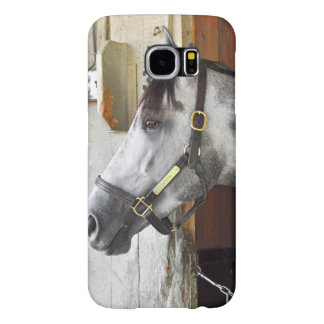 Destin - Horse Haven Samsung Galaxy S6 Cases
