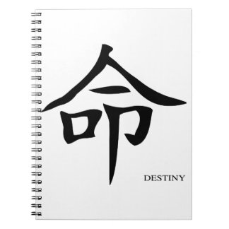 Destiny Chinese Character Notebooks