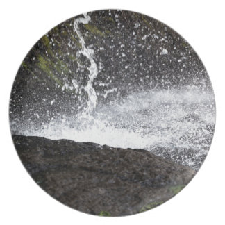 Detail of a small waterfall plate