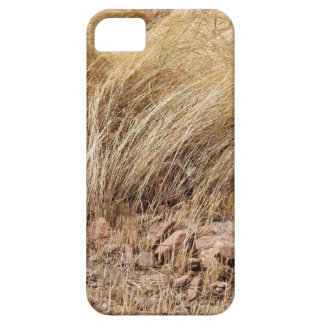 Detail of a teff field during harvest iPhone 5 case
