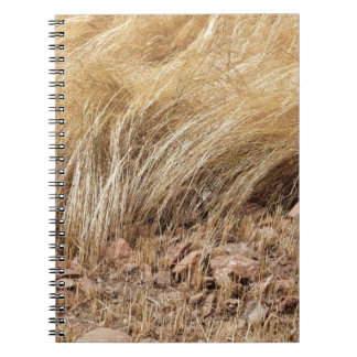 Detail of a teff field during harvest notebooks