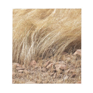 Detail of a teff field during harvest notepad