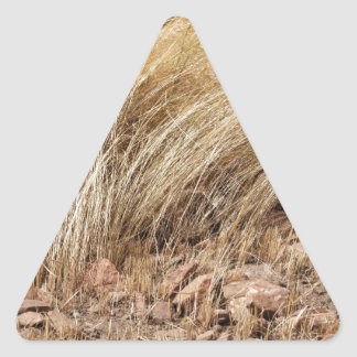 Detail of a teff field during harvest triangle sticker