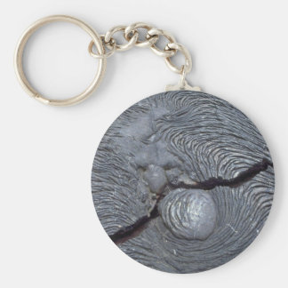 Detail of cracked lava, Bartolome Island, Galapago Key Ring