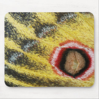 Detail Of Emperor Moth (Saturniidae) Wing Mouse Pad