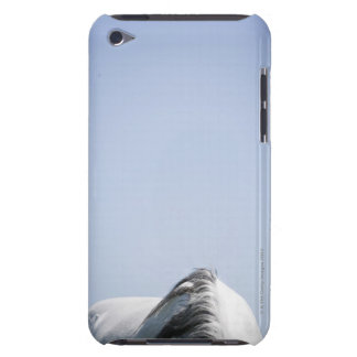 detail of white horse iPod touch case