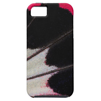 Detail Wing Pattern of Tropical Butterfly iPhone 5 Cases