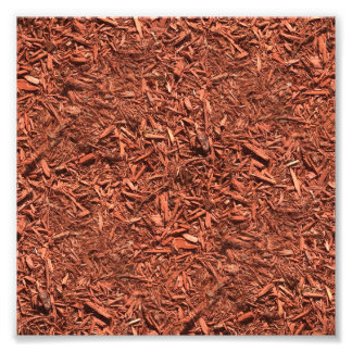 detailed mulch of red cedar for landscaper photo print