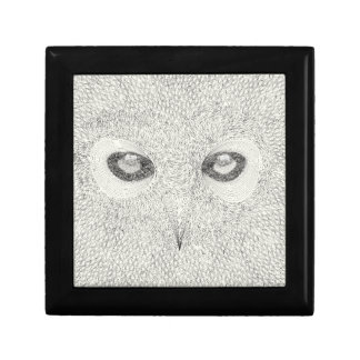 Detailed owl illustration in black and white gift box