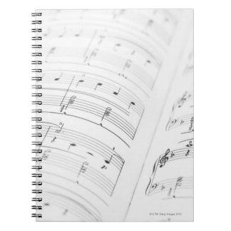 Detailed Sheet Music 3 Notebooks