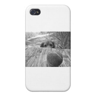 Determined Dog iPhone 4/4S Case