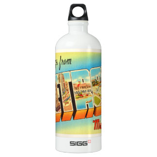 Detroit Michigan MI Old Vintage Travel Souvenir SIGG Traveller 1.0L Water Bottle