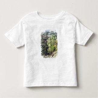 Devil's Bridge, 1810 (w/c with pen & ink over grap Toddler T-Shirt