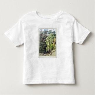 Devil's Bridge, 1810 (w/c with pen & ink over grap T-shirts
