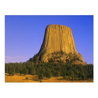 Devils Tower National Monument in Wyoming Postcard