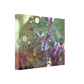 Dew Circles Canvas Print