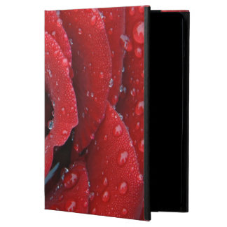 Dew covered red rose decorating grave site in iPad air case
