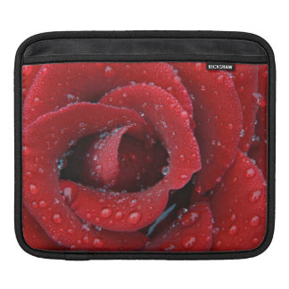 Dew covered red rose decorating grave site in iPad sleeves