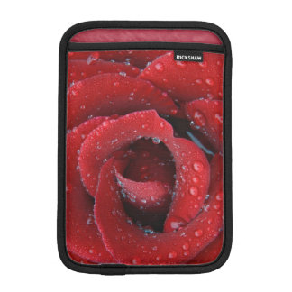 Dew covered red rose decorating grave site in sleeve for iPad mini