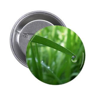 dew drop buttons