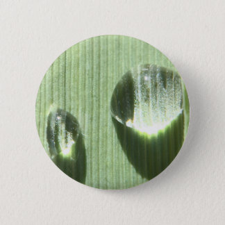 Dew Drops 6 Cm Round Badge