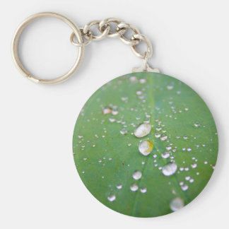 Dew Drops Basic Round Button Key Ring