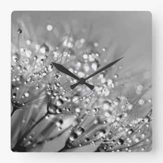 Dew Drops Black and White Square Wall Clock