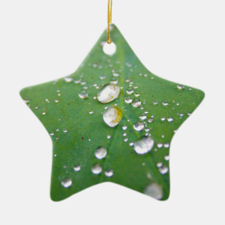Dew Drops Ceramic Ornament