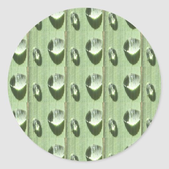 Dew Drops Classic Round Sticker