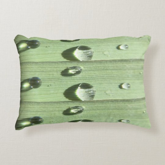 Dew Drops Decorative Cushion