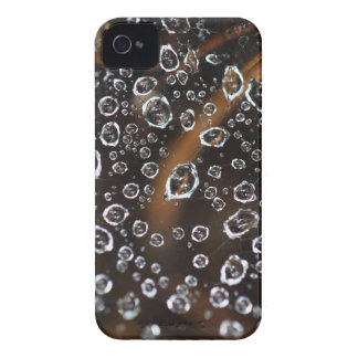 Dew drops in a spider net Case-Mate iPhone 4 cases