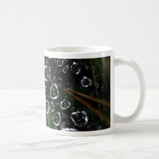 Dew drops in a spider net coffee mug