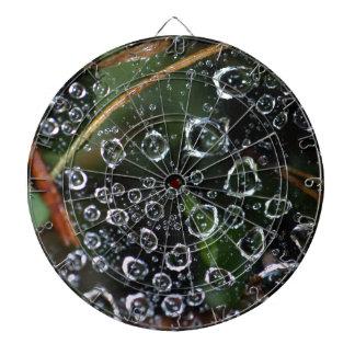 Dew drops in a spider net dartboard