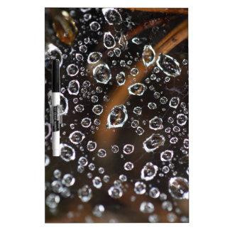 Dew drops in a spider net dry erase board