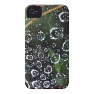 Dew drops in a spider net iPhone 4 Case-Mate case