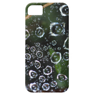 Dew drops in a spider net iPhone 5 case