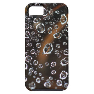 Dew drops in a spider net iPhone 5 covers