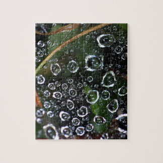 Dew drops in a spider net jigsaw puzzle