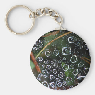 Dew drops in a spider net key ring