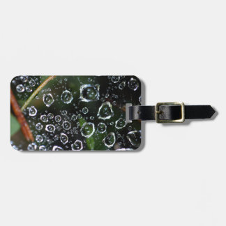 Dew drops in a spider net luggage tag
