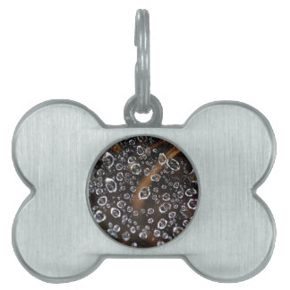 Dew drops in a spider net pet ID tag