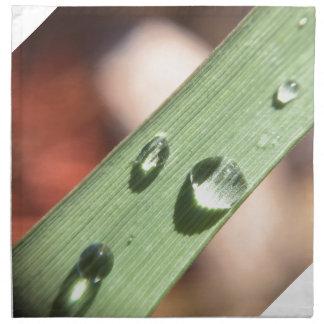 Dew Drops Napkin