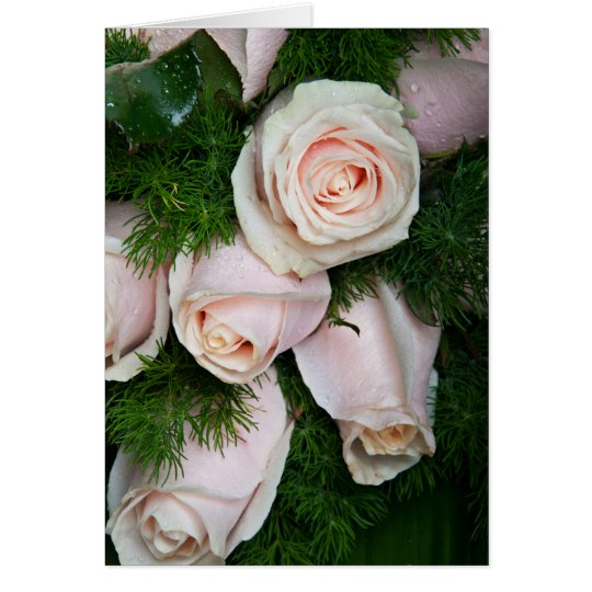 Dew Drops On Pink Roses Card