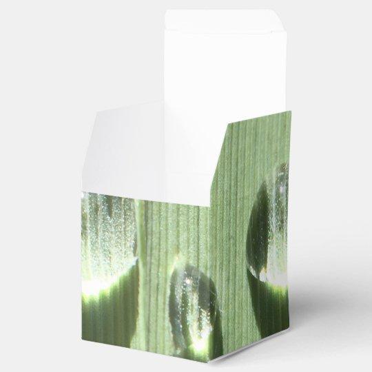 Dew Drops Party Favour Boxes