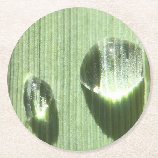 Dew Drops Round Paper Coaster