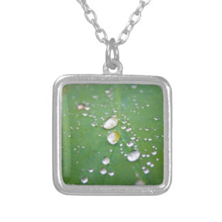 Dew Drops Silver Plated Necklace