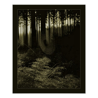 Dew in the Wood Poster