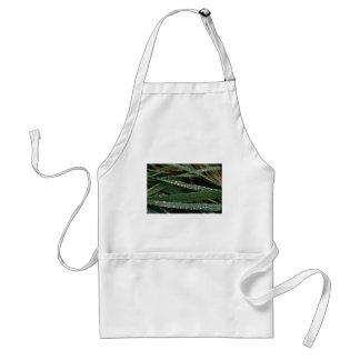 Dew on blades of grass apron