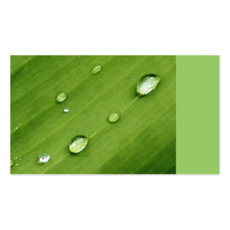 Dew on Leaf Nature Business Cards