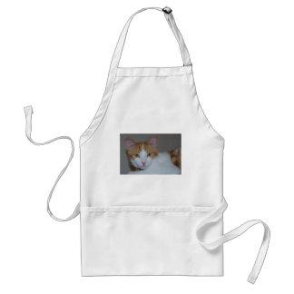 dexter adult apron